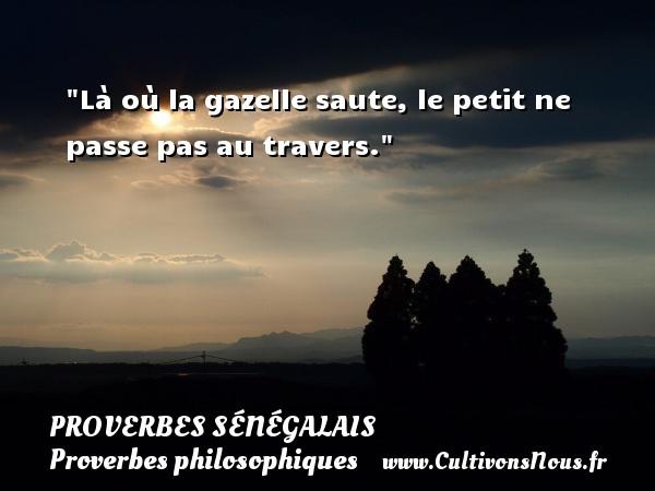 Proverbes sénégalais - Proverbes philosophiques - Là où la gazelle saute, le petit ne passe pas au travers. Un Proverbe sénégalais PROVERBES SÉNÉGALAIS