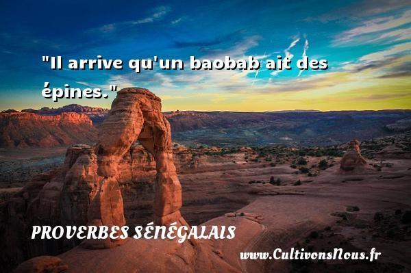 Il arrive qu un baobab ait des épines. Un Proverbe sénégalais PROVERBES SÉNÉGALAIS - Proverbes sénégalais - Proverbes philosophiques