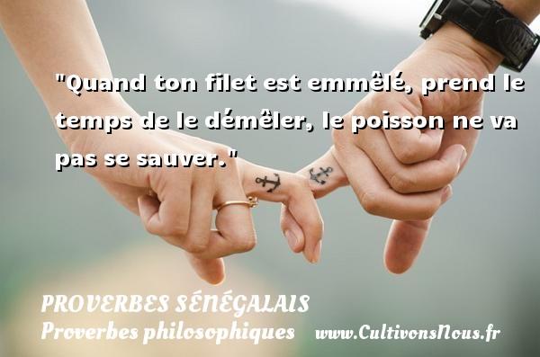 Proverbes sénégalais - Proverbes philosophiques - Quand ton filet est emmêlé, prend le temps de le démêler, le poisson ne va pas se sauver. Un Proverbe sénégalais PROVERBES SÉNÉGALAIS