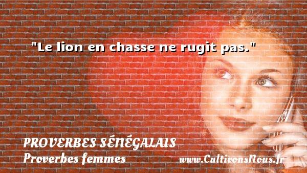 Le lion en chasse ne rugit pas. Un Proverbe sénégalais PROVERBES SÉNÉGALAIS - Proverbes sénégalais - Proverbes femmes