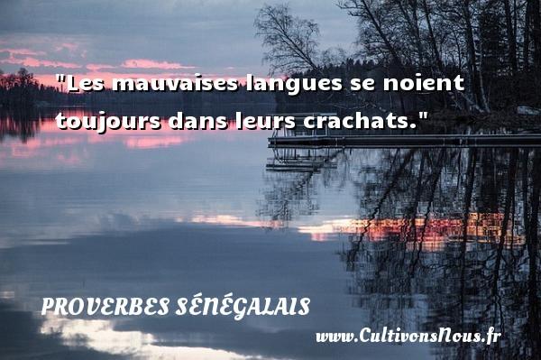 Les mauvaises langues se noient toujours dans leurs crachats. Un Proverbe sénégalais PROVERBES SÉNÉGALAIS - Proverbes sénégalais