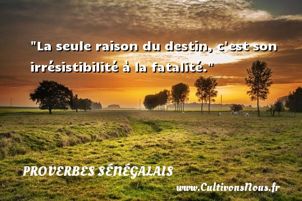 La seule raison du destin, c est son irrésistibilité à la fatalité. Un Proverbe sénégalais PROVERBES SÉNÉGALAIS - Proverbes sénégalais - Proverbes destin