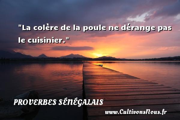 La colère de la poule ne dérange pas le cuisinier. Un Proverbe sénégalais PROVERBES SÉNÉGALAIS - Proverbes sénégalais - Proverbe colère