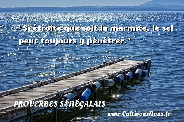 Si étroite que soit la marmite, le sel peut toujours y pénétrer. Un Proverbe sénégalais PROVERBES SÉNÉGALAIS - Proverbes sénégalais