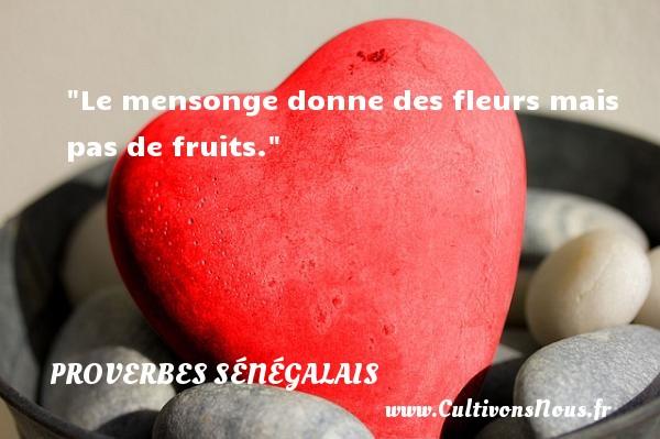Proverbes sénégalais - Proverbe mensonge - Le mensonge donne des fleurs mais pas de fruits. Un Proverbe sénégalais PROVERBES SÉNÉGALAIS