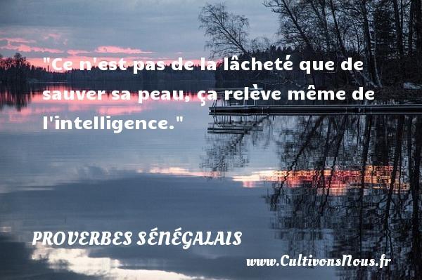 Ce n est pas de la lâcheté que de sauver sa peau, ça relève même de l intelligence. Un Proverbe sénégalais PROVERBES SÉNÉGALAIS - Proverbes sénégalais