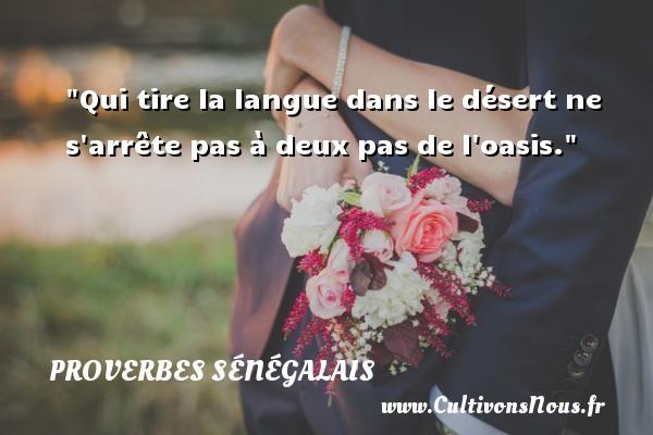 Qui tire la langue dans le désert ne s arrête pas à deux pas de l oasis. Un Proverbe sénégalais PROVERBES SÉNÉGALAIS - Proverbes sénégalais