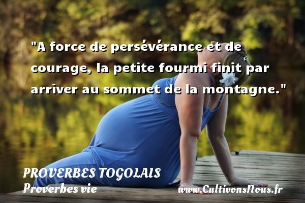 Proverbes togolais - Proverbes vie - A force de persévérance et de courage, la petite fourmi finit par arriver au sommet de la montagne. Un Proverbe togolais PROVERBES TOGOLAIS