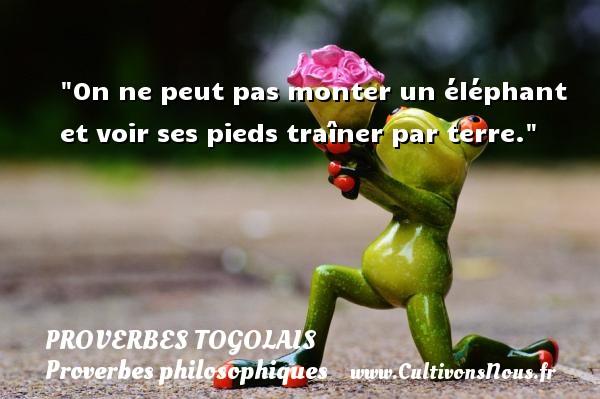 Proverbes togolais - Proverbes philosophiques - On ne peut pas monter un éléphant et voir ses pieds traîner par terre. Un Proverbe togolais PROVERBES TOGOLAIS