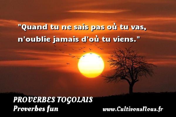 Quand tu ne sais pas où tu vas, n oublie jamais d où tu viens. Un Proverbe togolais PROVERBES TOGOLAIS - Proverbes fun - Proverbes philosophiques
