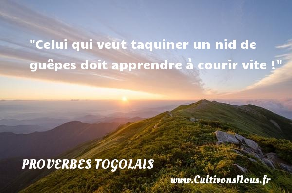 Proverbes togolais - Proverbe apprendre - Celui qui veut taquiner un nid de guêpes doit apprendre à courir vite ! Un Proverbe togolais PROVERBES TOGOLAIS