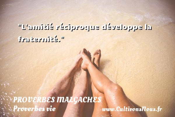 Proverbes malgaches - Proverbes vie - L amitié réciproque développe la fraternité. Un Proverbe malgache PROVERBES MALGACHES