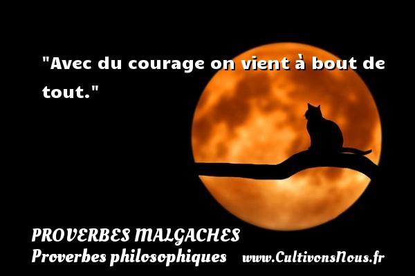 Proverbes malgaches - Proverbes philosophiques - Proverbes vie - Avec du courage on vient à bout de tout.  Un Proverbe malgache PROVERBES MALGACHES