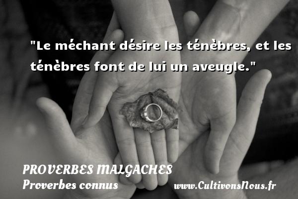 Proverbes malgaches - Proverbes connus - Proverbes philosophiques - Le méchant désire les ténèbres, et les ténèbres font de lui un aveugle. Un Proverbe malgache PROVERBES MALGACHES