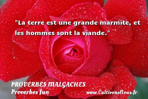 Proverbes malgaches - Proverbes fun - La terre est une grande marmite, et les hommes sont la viande. Un Proverbe malgache PROVERBES MALGACHES