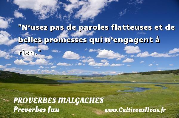 Proverbes malgaches - Proverbes fun - Proverbes philosophiques - N'usez pas de paroles flatteuses et de belles promesses qui n'engagent à rien. Un Proverbe malgache PROVERBES MALGACHES