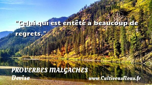 Celui qui est entêté a beaucoup de regrets. Un Proverbe malgache PROVERBES MALGACHES - Devise - Proverbes philosophiques