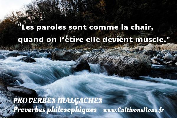 Proverbes malgaches - Proverbes philosophiques - Les paroles sont comme la chair, quand on l'étire elle devient muscle. Un Proverbe malgache PROVERBES MALGACHES