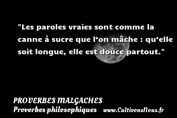 Proverbes malgaches - Proverbes philosophiques - Les paroles vraies sont comme la canne à sucre que l'on mâche : qu'elle soit longue, elle est douce partout. Un Proverbe malgache PROVERBES MALGACHES