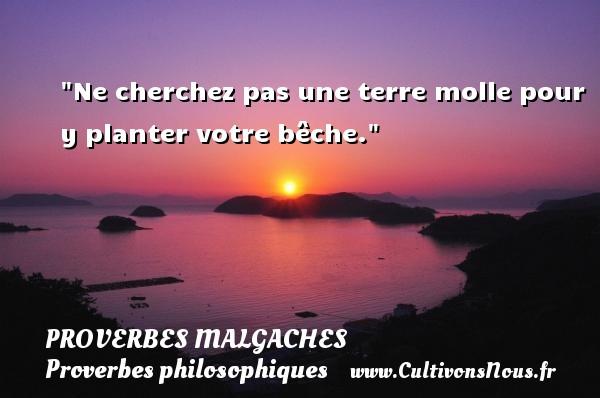 Proverbes malgaches - Proverbes philosophiques - Ne cherchez pas une terre molle pour y planter votre bêche. Un Proverbe malgache PROVERBES MALGACHES