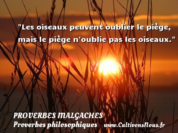 Proverbes malgaches - Proverbes philosophiques - Les oiseaux peuvent oublier le piège, mais le piège n oublie pas les oiseaux. Un Proverbe malgache PROVERBES MALGACHES