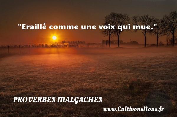 Eraillé comme une voix qui mue. Un Proverbe malgache PROVERBES MALGACHES - Proverbes philosophiques
