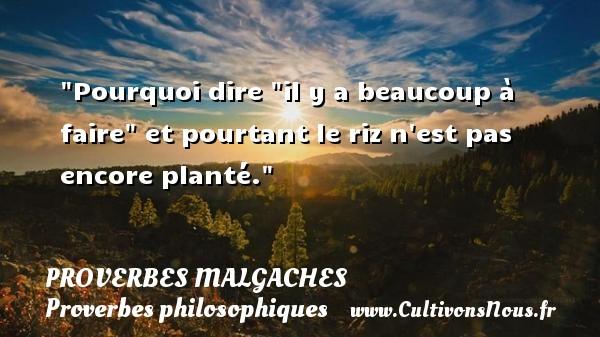 Proverbes malgaches - Proverbes philosophiques - Pourquoi dire  il y a beaucoup à faire  et pourtant le riz n est pas encore planté. Un Proverbe malgache PROVERBES MALGACHES