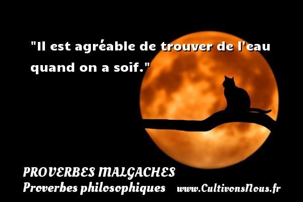 Proverbes malgaches - Proverbes philosophiques - Il est agréable de trouver de l eau quand on a soif. Un Proverbe malgache PROVERBES MALGACHES