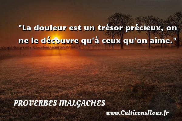Proverbes malgaches - Proverbes douleur - La douleur est un trésor précieux, on ne le découvre qu à ceux qu on aime. Un Proverbe malgache PROVERBES MALGACHES