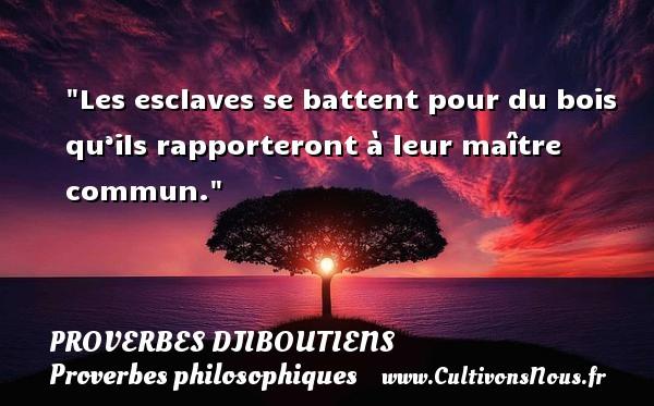 Les esclaves se battent pour du bois qu'ils rapporteront à leur maître commun. Un Proverbe Djiboutien PROVERBES DJIBOUTIENS - Proverbes philosophiques