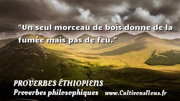 Proverbes éthiopiens - Proverbes philosophiques - Un seul morceau de bois donne de la fumée mais pas de feu.  Un Proverbe éthiopien PROVERBES ÉTHIOPIENS