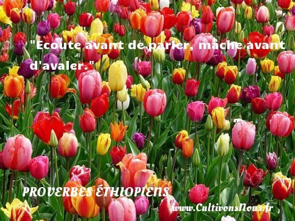 Proverbes éthiopiens - Proverbes fun - Proverbes philosophiques - Ecoute avant de parler, mâche avant d avaler. Un Proverbe éthiopien PROVERBES ÉTHIOPIENS