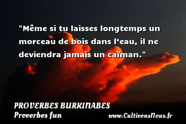 Proverbes burkinabes - Proverbes fun - Proverbes philosophiques - Même si tu laisses longtemps un morceau de bois dans l'eau, il ne deviendra jamais un caïman. Un Proverbe burkinabé PROVERBES BURKINABES