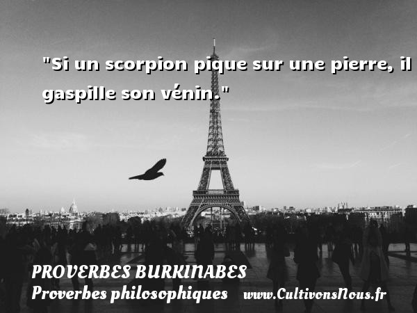 Si un scorpion pique sur une pierre, il gaspille son vénin. Un Proverbe burkinabé PROVERBES BURKINABES - Proverbes philosophiques