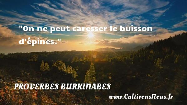 On ne peut caresser le buisson d épines. Un Proverbe burkinabé PROVERBES BURKINABES - Proverbes philosophiques