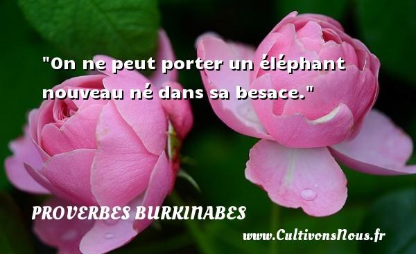 On ne peut porter un éléphant nouveau né dans sa besace. Un Proverbe burkinabé PROVERBES BURKINABES - Proverbes philosophiques