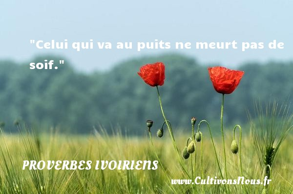 Celui qui va au puits ne meurt pas de soif. Un Proverbe ivoirien PROVERBES IVOIRIENS - Proverbes philosophiques