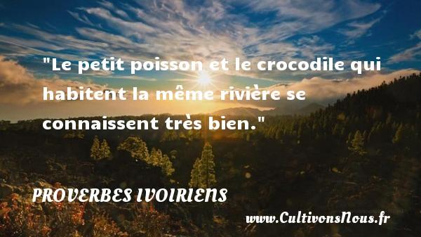 Le petit poisson et le crocodile qui habitent la même rivière se connaissent très bien. Un Proverbe ivoirien PROVERBES IVOIRIENS - Proverbes connus - Proverbes philosophiques
