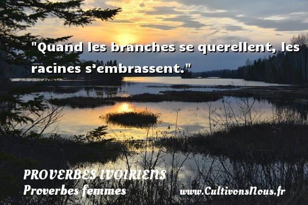Quand les branches se querellent, les racines s'embrassent. Un Proverbe ivoirien PROVERBES IVOIRIENS - Proverbes femmes