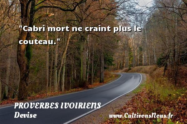 Cabri mort ne craint plus le couteau. Un Proverbe ivoirien PROVERBES IVOIRIENS - Devise - Proverbes philosophiques