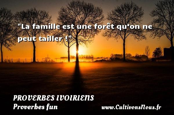 La famille est une forêt qu'on ne peut tailler ! Un Proverbe ivoirien PROVERBES IVOIRIENS - Proverbes fun - Proverbes philosophiques
