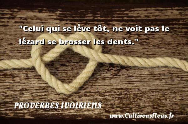 Proverbes ivoiriens - Celui qui se lève tôt, ne voit pas le lézard se brosser les dents. Un Proverbe ivoirien PROVERBES IVOIRIENS