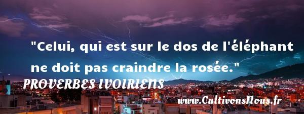 Celui, qui est sur le dos de l éléphant ne doit pas craindre la rosée. Un Proverbe ivoirien PROVERBES IVOIRIENS