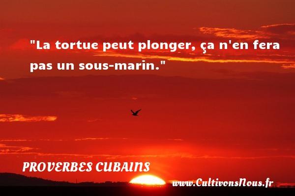 Proverbes cubains - Proverbe bain - Proverbes philosophiques - La tortue peut plonger, ça n en fera pas un sous-marin. Un Proverbe cubain PROVERBES CUBAINS