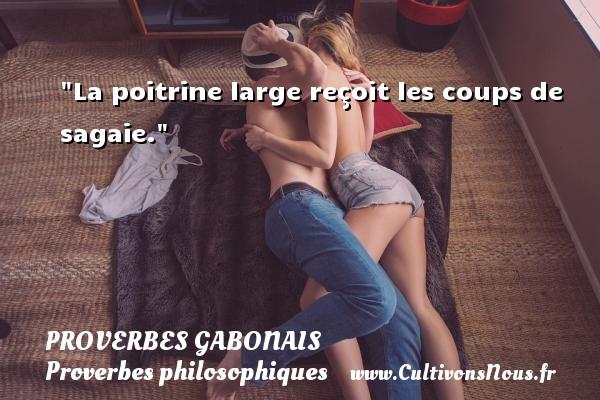 La poitrine large reçoit les coups de sagaie. Un Proverbe gabonais PROVERBES GABONAIS - Proverbes philosophiques