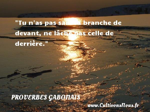 Tu n as pas saisi la branche de devant, ne lâche pas celle de derrière. Un Proverbe gabonais PROVERBES GABONAIS - Proverbes fun - Proverbes philosophiques