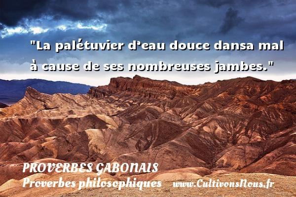 Proverbes gabonais - Proverbes philosophiques - La palétuvier d'eau douce dansa mal à cause de ses nombreuses jambes.  Un Proverbe gabonais PROVERBES GABONAIS