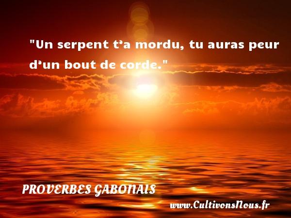 Proverbes gabonais - Proverbes philosophiques - Un serpent t'a mordu, tu auras peur d'un bout de corde. Un Proverbe gabonais PROVERBES GABONAIS
