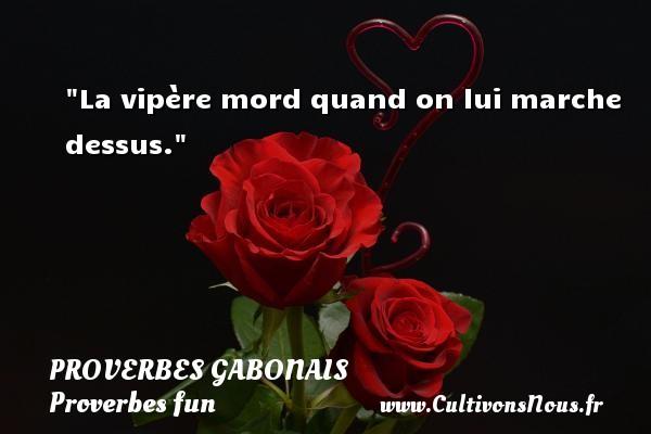 La vipère mord quand on lui marche dessus. Un Proverbe gabonais PROVERBES GABONAIS - Proverbes fun - Proverbes philosophiques