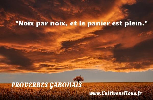 Proverbes gabonais - Proverbes philosophiques - Noix par noix, et le panier est plein. Un Proverbe gabonais PROVERBES GABONAIS